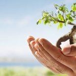 Commercial Insurance For Beginners