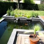 Keep up a Clean Garden Pond - Keep Your Fish Healthy
